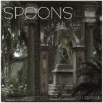 spoons10